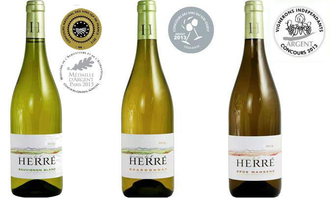 Vin blanc un amour de gascogne - Chambre d amour vin blanc ...